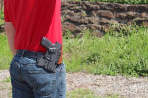 concealment owb Sig P365 holster